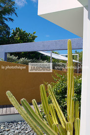 Cactus, Villa SEA à Saint-Barthélémy (location Wimco)
