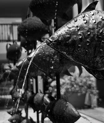 Fish_Fountains_crop_BW_copy