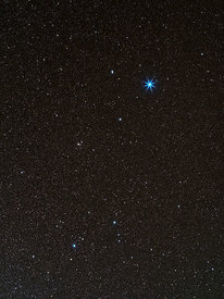 Constellation of the Lyra