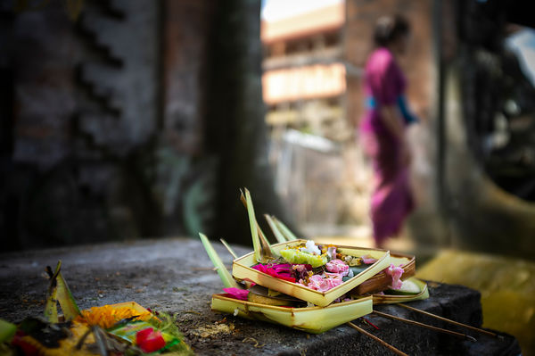 Ceremonial daily offerings. Ubud. Bali. Indonesia