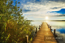 Boardwalk at lake - Europe, Germany, Bavaria, Upper Bavaria, Starnberg, Schlagenhofen (Fünfseenland, Wörthsee) - digital