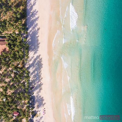 Aerial view of palm fringed beach, El Nido, Philippines