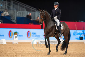 20191129 Madrid Horse Week