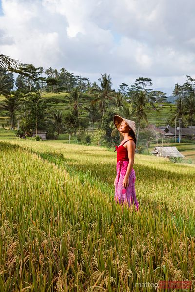 Beautiful asian woman in a rice field at sunset, Bali