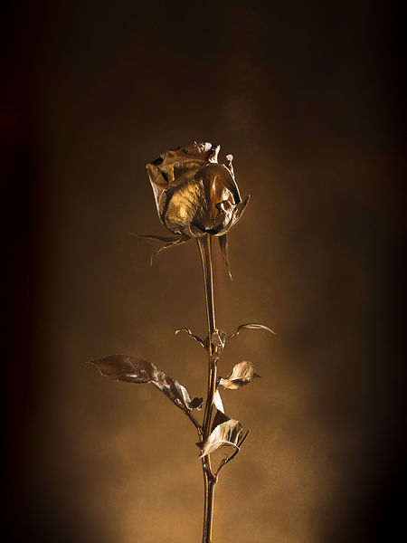 FLOWERS-GOLD-011