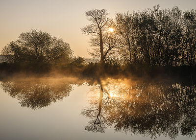 Rising mist in early sunshine on the mirror calm Exeter Canal, Exeter, Devon, UK