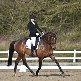 14/02/2020 - Class 3 - British dressage - Brook Farm training centre - UK