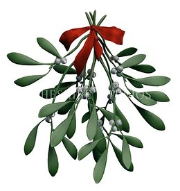 Holiday Mistletoe