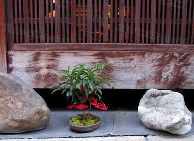 Arrangement de Gion