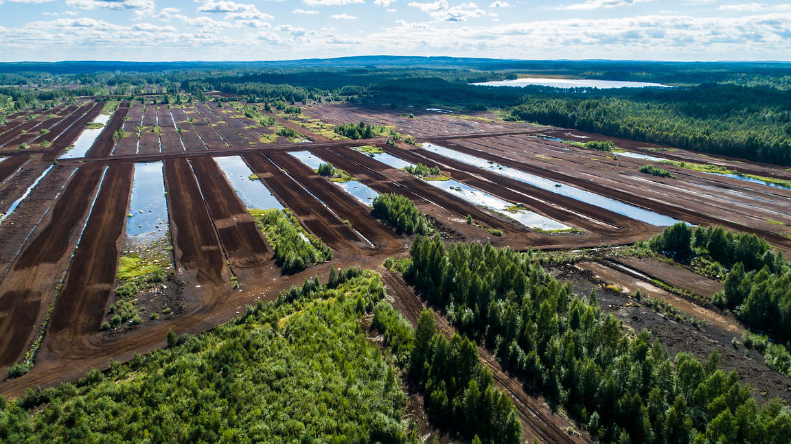 Peat production area of Haapasuo