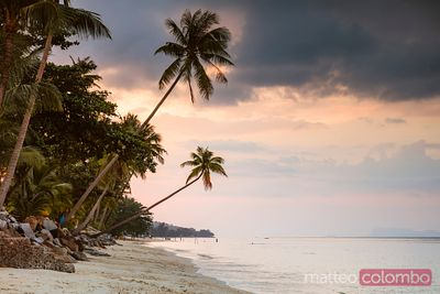 Beach with palm trees at sunset, Ko Samui, Thailand