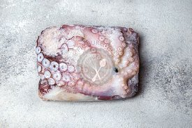 Frozen whole octopus in ice