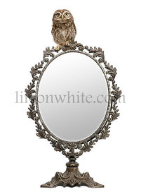 Little Owl, 50 days old, Athene noctua, in front of a white background with a mirror