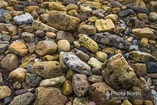 BEADNELL 24A - Rocks on the shore at Beadnell