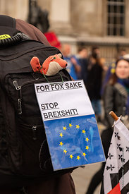 #124609,  Anti-Brexit march to Parliament Square, London, 23rd March 2019.  A million people of all ages marched demanding a ...