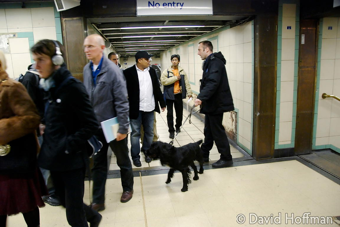 071129_DogDrugCheck_113 Police drug check with sniffer dogs checking passengers at Mile End Underground station, London. Dece...