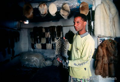 Man selling illegal pelts of endangered species, Agadir, Morocco. 1991.