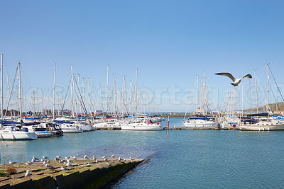 Yachts_Howth_Harbour_02