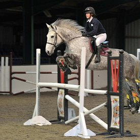 17/03/2019 - Unaffiliated showjumping - Brook Farm training centre