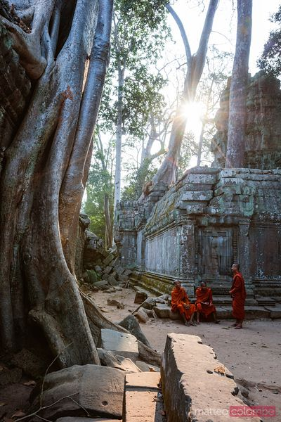 Buddhist monks at famous Ta Prohm temple, Cambodia