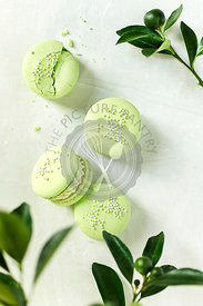 Lime Macarons  on a white background.