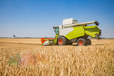 Austria, Burgenland, combine harvester on a wheat field