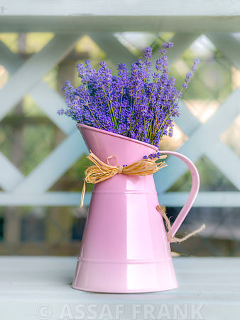 Jug with Lavender flowers