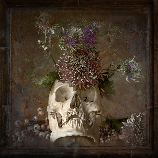 Flowers of the crypt, Vanitas, © 2015 Bobby C.Alkabes