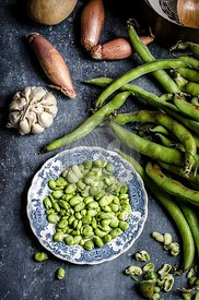 Making fava bean soup