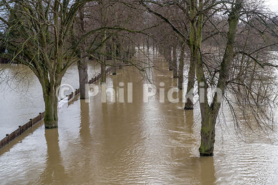 River Severn in Shrewsbury in flood after storm Dennis in Feb 2020