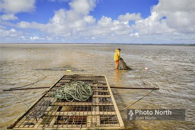 FLOOKBURGH 50F - Morecambe Bay Shrimp fishing