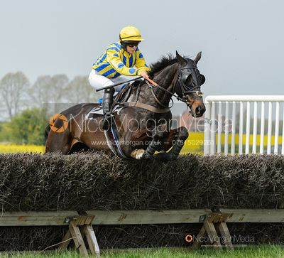 MERRYDOWN BLACK (Sophie Walker) - Race 1 - The South Notts at Thorpe Lodge