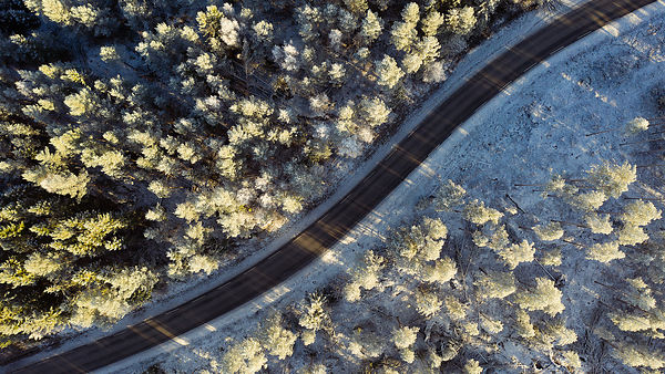 Winding road with frost covered trees