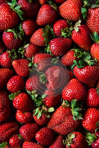 Strawberries laid out for a background