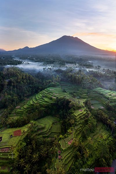 Volcano with smoke plume and rice fields at sunrise, Bali
