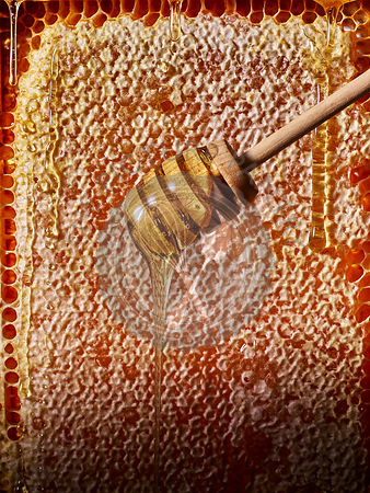 A honey drizzler in front of a bees honeycomb