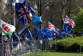 #124682  Brexit demonstrators' flags, College Green opposite the Palace of Westminster.   They demonstrated outside the House...