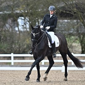 17/01/2020 - Class 7 - British dressage - Brook Farm training centre