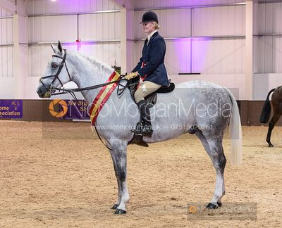 675 Katy Green and THE PROF - BHSA Hunter Show 2019