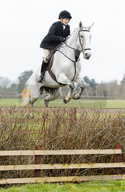 Margo Sly jumping a hedge near the meet
