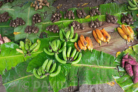 Fruits and vegetables for sale in produce market in Kirakira on Makira Island Solomon Islands South Pacific, including banana...