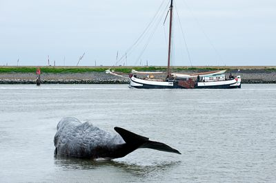 Harlingen, 'The Whale' sculpture from 11 Fountains project, Netherlands