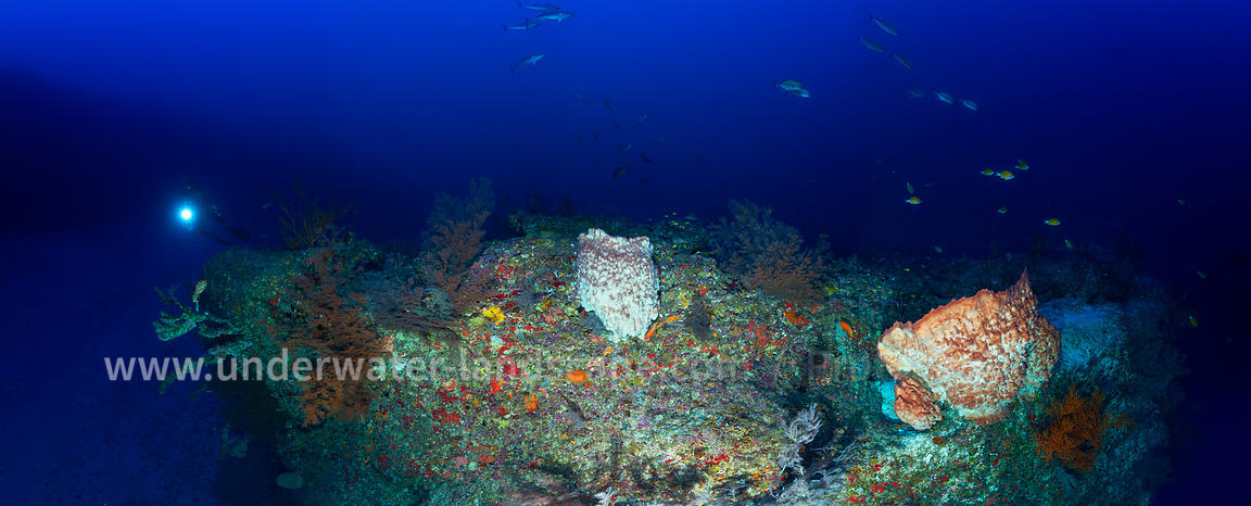 Panorama of a deep reef