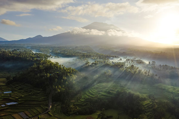 Volcano and Rice Paddies