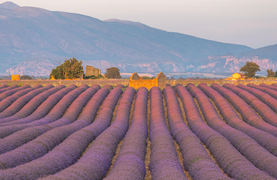 patrice_aguilar_Provence-1