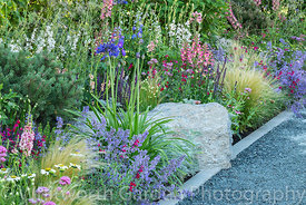 The Viking Cruises Lagom Garden designed by Will Williams at the RHS Hampton Court Palace Garden Festival 2019. Sponsor: Viki...