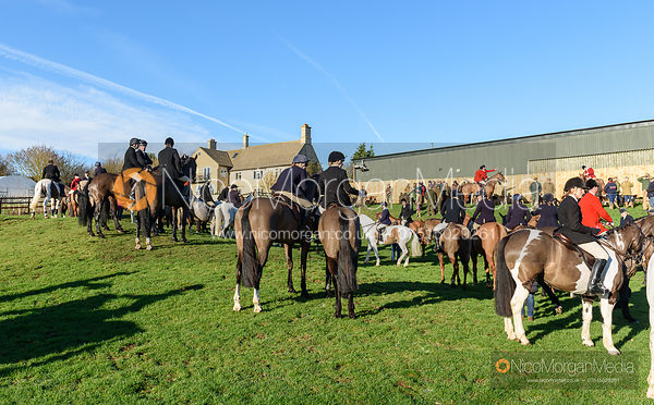 At the meet. The Pytchley Hounds visit the Cottesmore at Town Park Farm 15/1