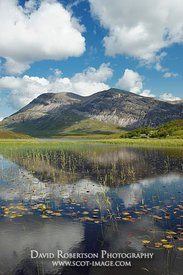 Image - Arkle reflected in Loch Stack, Sutherland