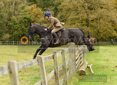 Jumping a fence in Milton Park - Fitzwilliam Hunt Opening Meet