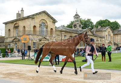Coral Keen and TOTAL BELIEF at the trot up, Equitrek Bramham Horse Trials 2019